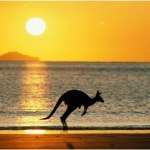 Australian Governments awards an extra 300,000 places