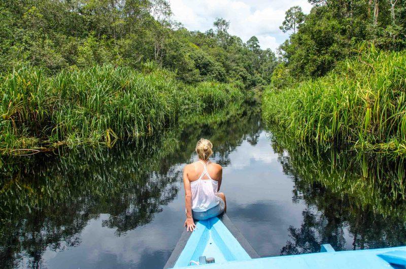 tanjung puting national park wooden boat