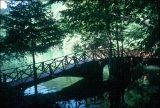 Yedigöller Milli Parkı 01