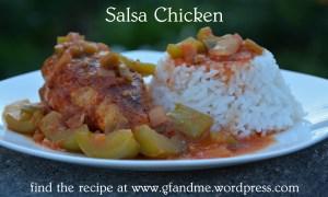 salsa chicken. gfandme 2013.