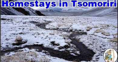 Homestays in Tsomoriri