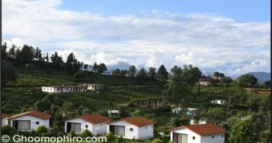 Review : KMVN Chaukori, Uttarakhand