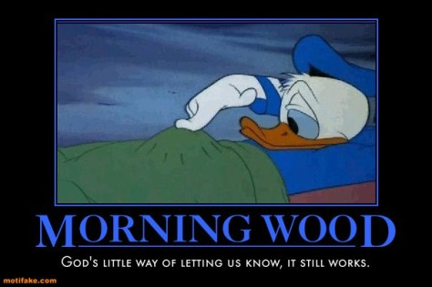 morning-wood-donald-duck-morning-wood-cubby-demotivational-posters-1300754006