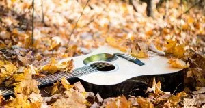 guitar laying in autumn leaves