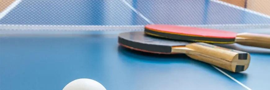 5 migliori tavoli da ping pong per esterno for Migliori tavoli allungabili