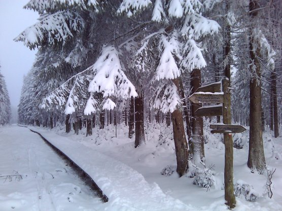 ski-fond-hautes-fagnes-00001