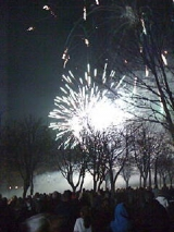 <h5>Fireworks display</h5>