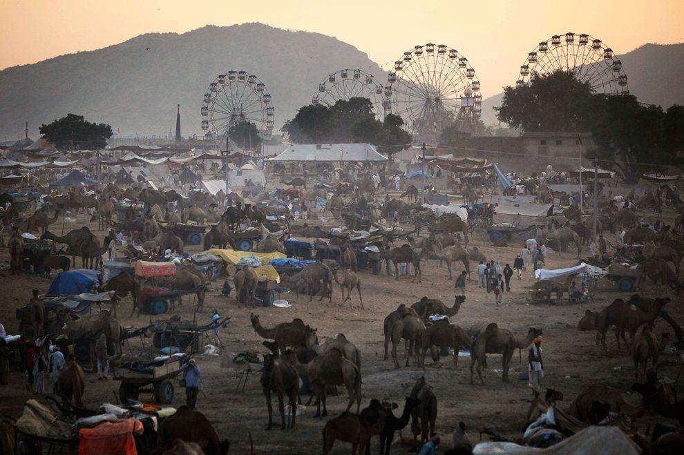 The carnival like atmosphere at Pushkar Camel Fair