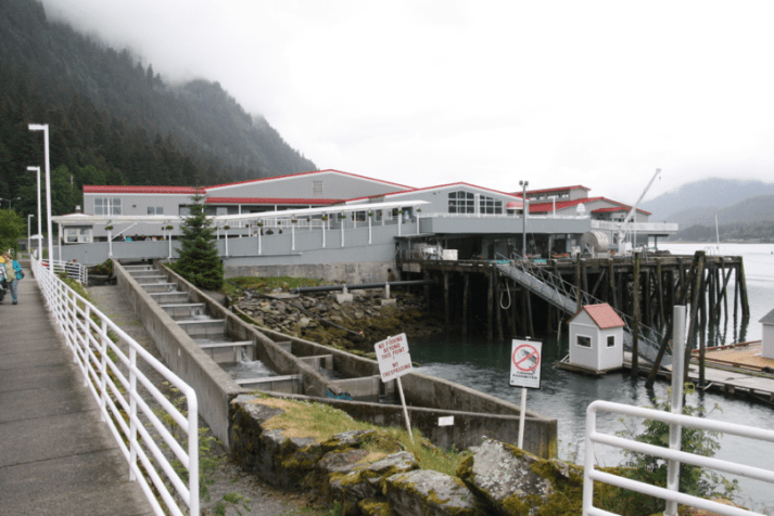 The salmon hatchery