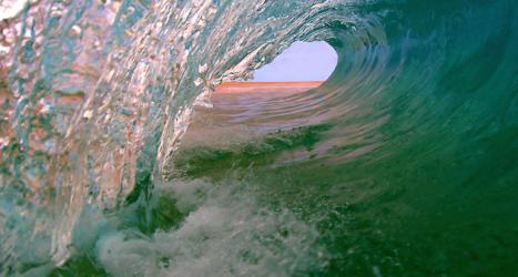 Wave ID 9911429