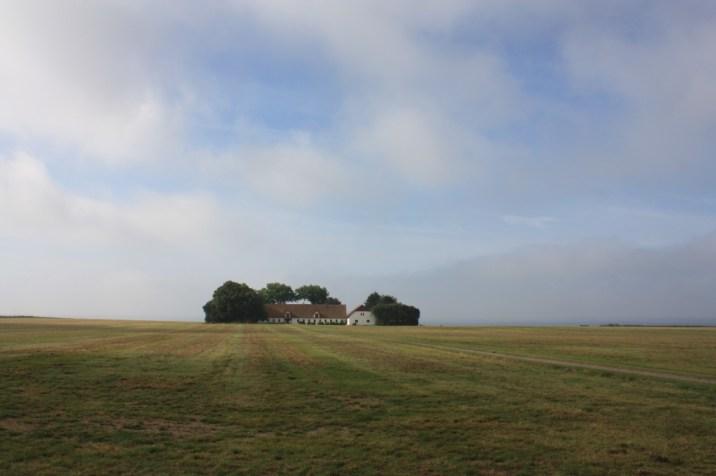 paysage - île de Møn - Danemark