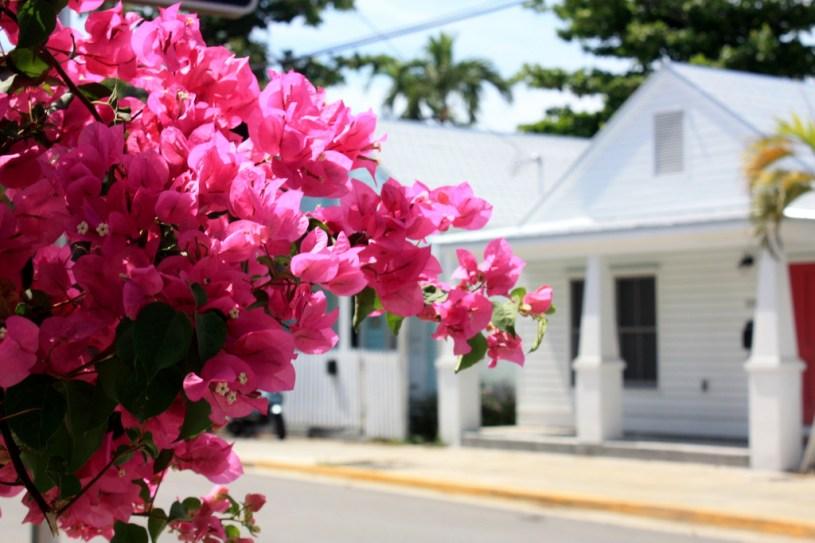 Maison de Key West