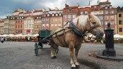 Rynek Starego Miasta, Old Town Square, Warsaw, Poland
