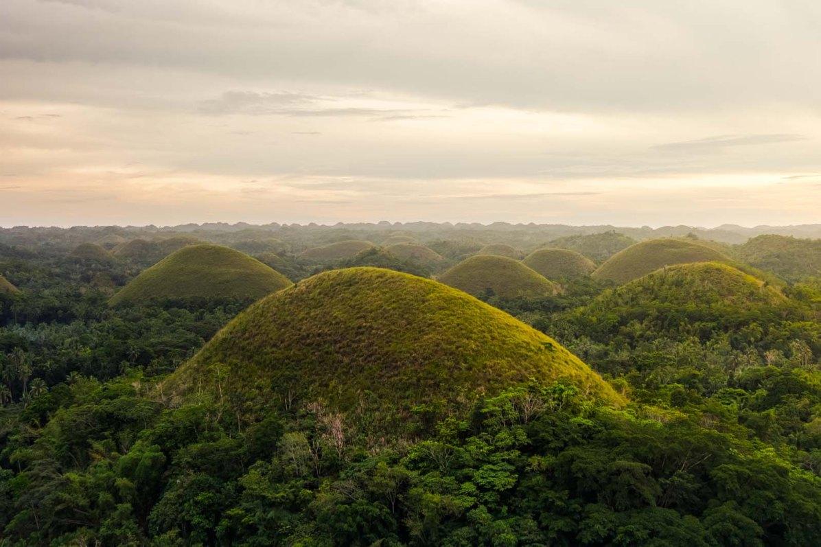 Chocolate Hill Philippinen