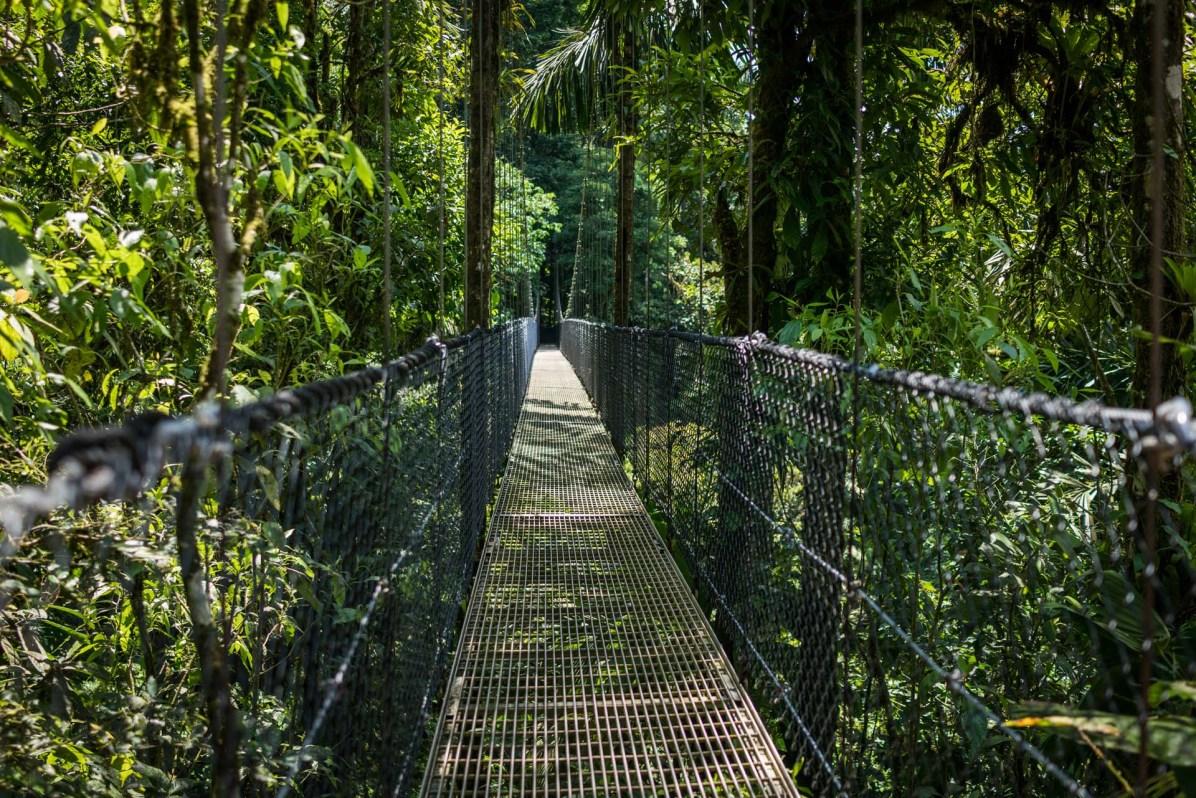 © Joseph Khakshouri Costa Rica