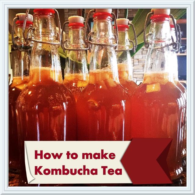 Making Kombucha Tea