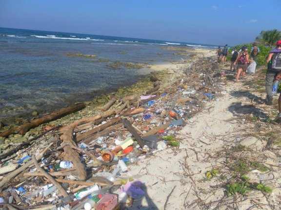 cleaning up Utila