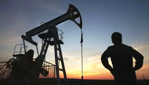 Crude Oil Rates Steadied on Thursday, Paring losses