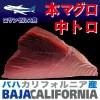 北太平洋 バハ カリフォルニア産 本マグロ 中トロ