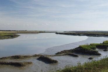 Essex Coast Line