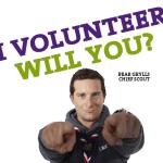 volunteer bear 2