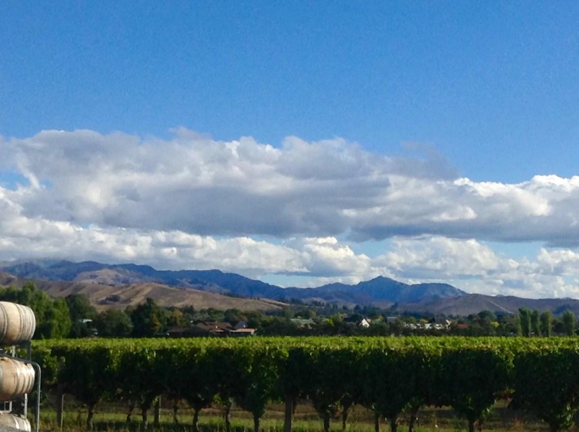 Marlborough – Savignon Blanc Wine Country