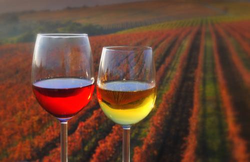 יין סלובני