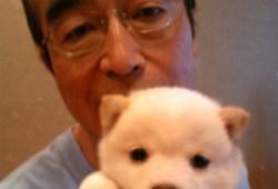 志村けん「10億円の遺産と愛犬の相続問題が浮上」報道に大ブーイング「親族に配慮して」「ゲスい記事」