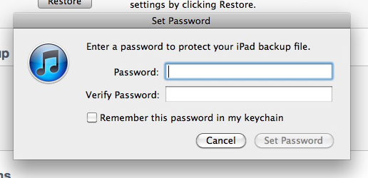 Backup password