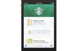 Starbucks Square Wallet