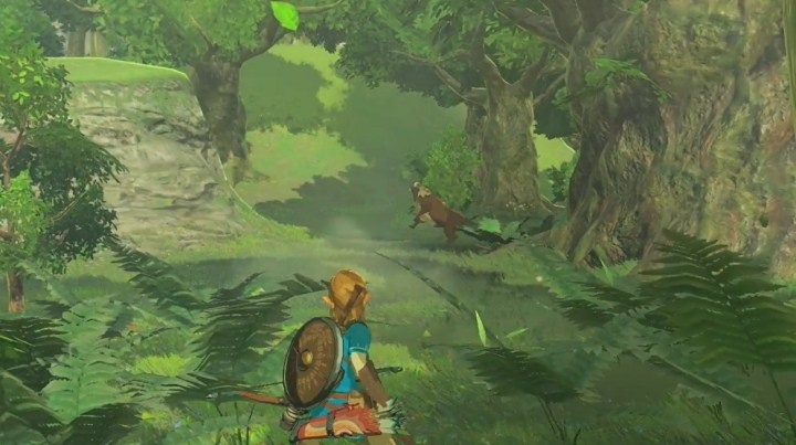 the legend of zelda breath of the wilds 4