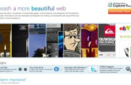 Beauty of the Web-2