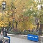 Droid RAZR Camera Test -- Outdoor Autumn Leaves