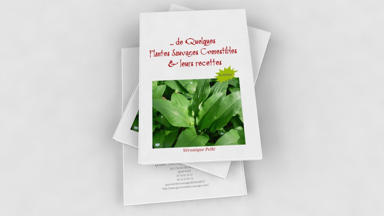 D couvrir 9 plantes sauvages comestibles de nos r gions for Commander des plantes