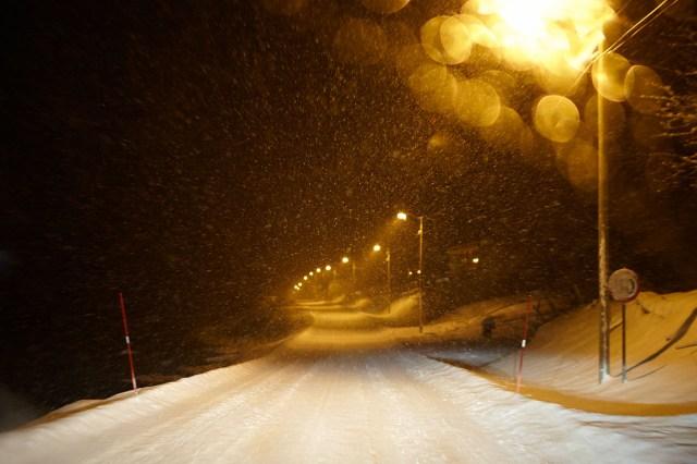 20130125_Tromso_084