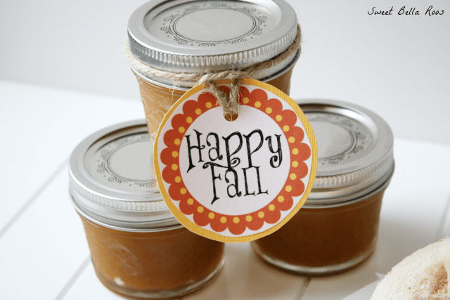 Pumpkin Apple Butter- tastes AMAZING on bread, biscuits, or in oatmeal.  Also a great gift! #pumpkin #recipes
