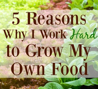 5 Reasons Why I Work Hard to Grow My Own Food