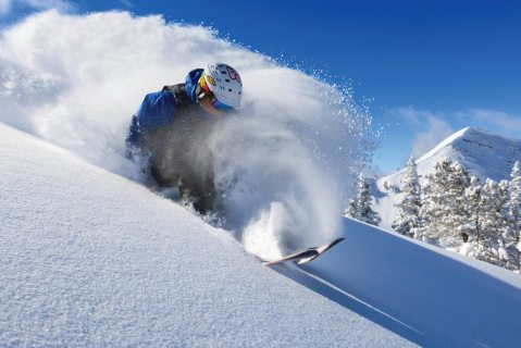 Targhee Powder