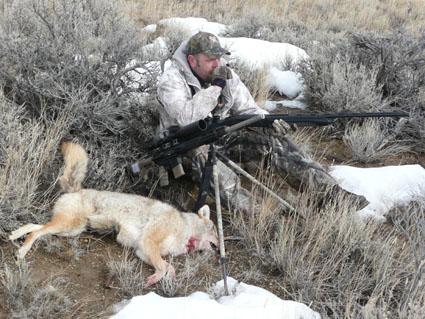 coyote hunting shotgun