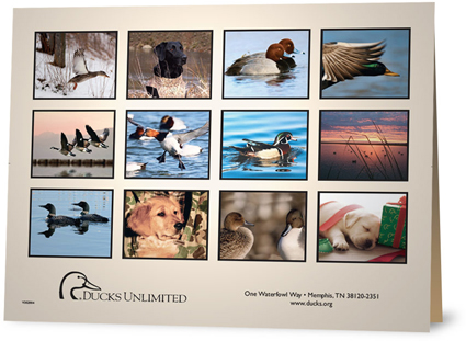 Ducks Unlimited Calendar 2009