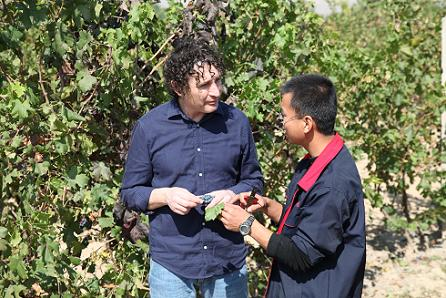 Winemakers Fragos and Liang at Helan Qing Xue (chapelhillwines.com.au(