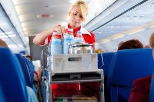 Flight Attendant 03