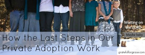 Final Steps in Our Adoption