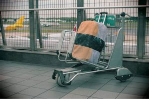 Sushi luggage bag cover on a trolley