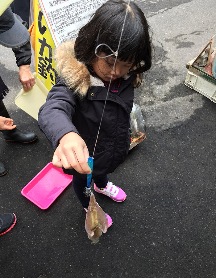 Squid fishing at Hakodate Morning Market