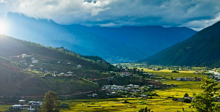 View of Bhutan rice paddies