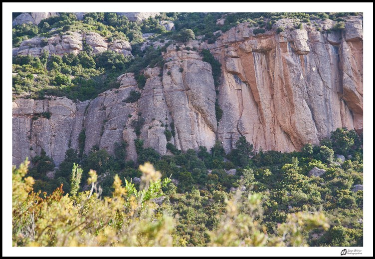 Espagne-Montserrat © Ivan Olivier Photographie (12)