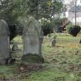 Hobbit Graveyard