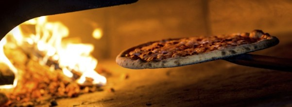 Wood Burning Oven - bring the variety to the table