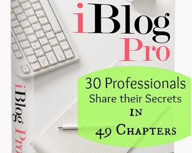 The Perfect eBook for Professional Bloggers